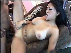 Asian cutie with big boobs Kea Kulani needs a huge black cock deep in her snatch